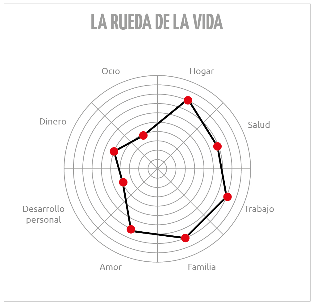 Rueda-vida-infografia
